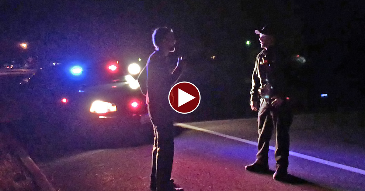 Man Takes over a Traffic Stop & Teaches Cop LAW!
